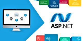 Professional Features Of Asp .Net Development To Enhance Your Business 1