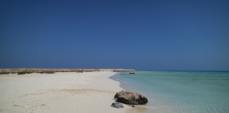 Find the best sea shores in Egypt