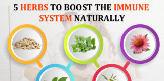5 herbs to boost the immune system naturally