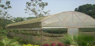 Is polyhouse farming